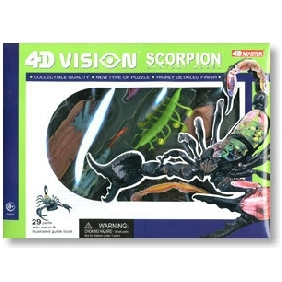 4D Master Teaching Model Series - 4D Scorpion Model